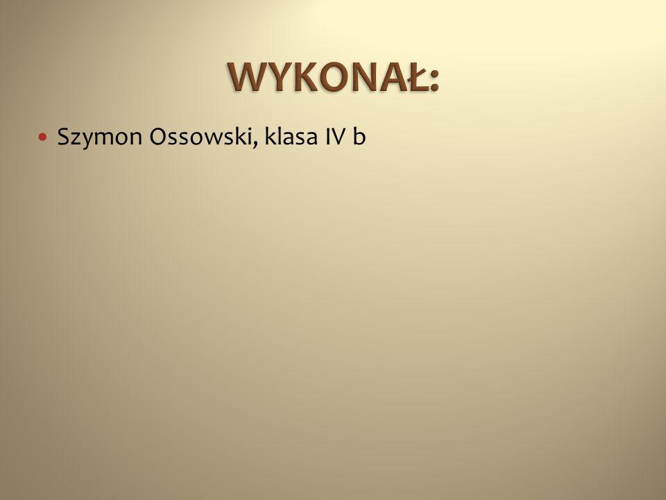 Szymon Ossowski, klasa IV b