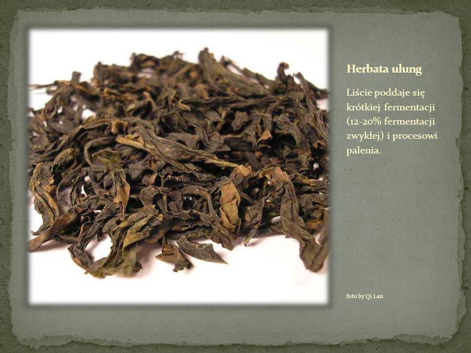 Liście poddaje się krótkiej fermentacji (12-20% fermentacji zwykłej) i procesowi palenia. foto by Qi Lan