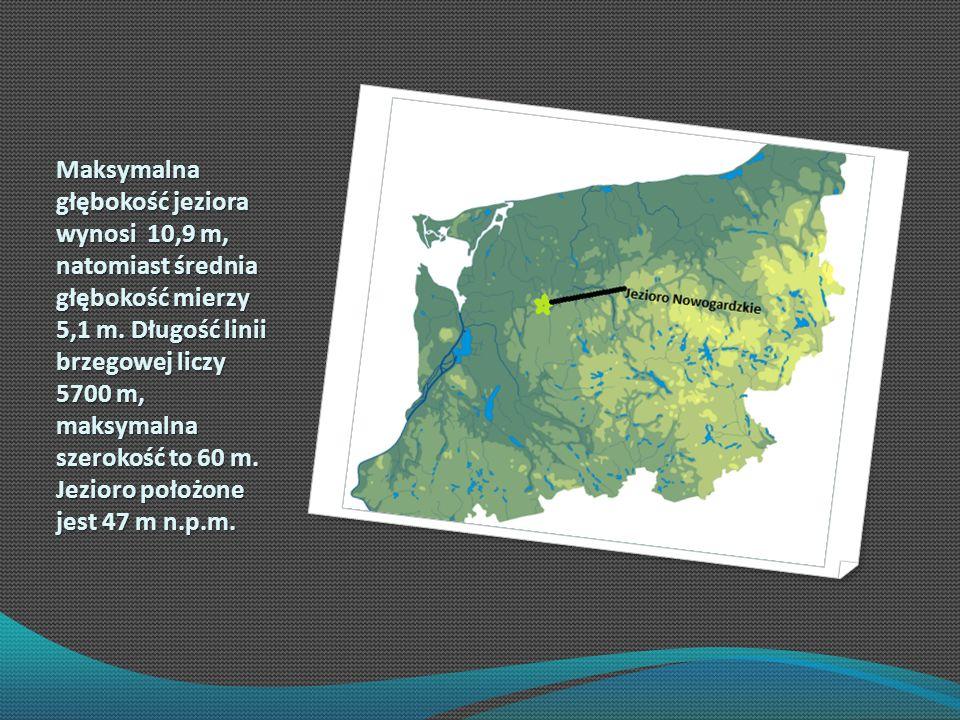 Maksymalna głębokość jeziora wynosi 10,9 m, natomiast średnia głębokość mierzy 5,1 m. Długość linii brzegowej liczy 5700 m, maksymalna szerokość to 60