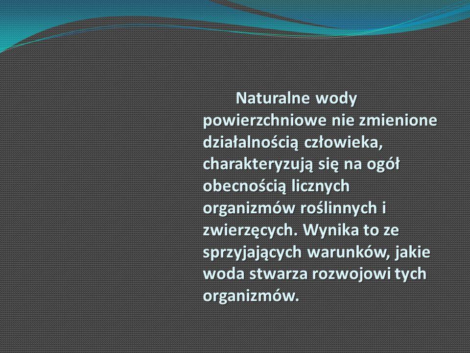 Naturalne wody powierzchniowe nie zmienione działalnością człowieka, charakteryzują się na ogół obecnością licznych organizmów roślinnych i zwierzęcyc