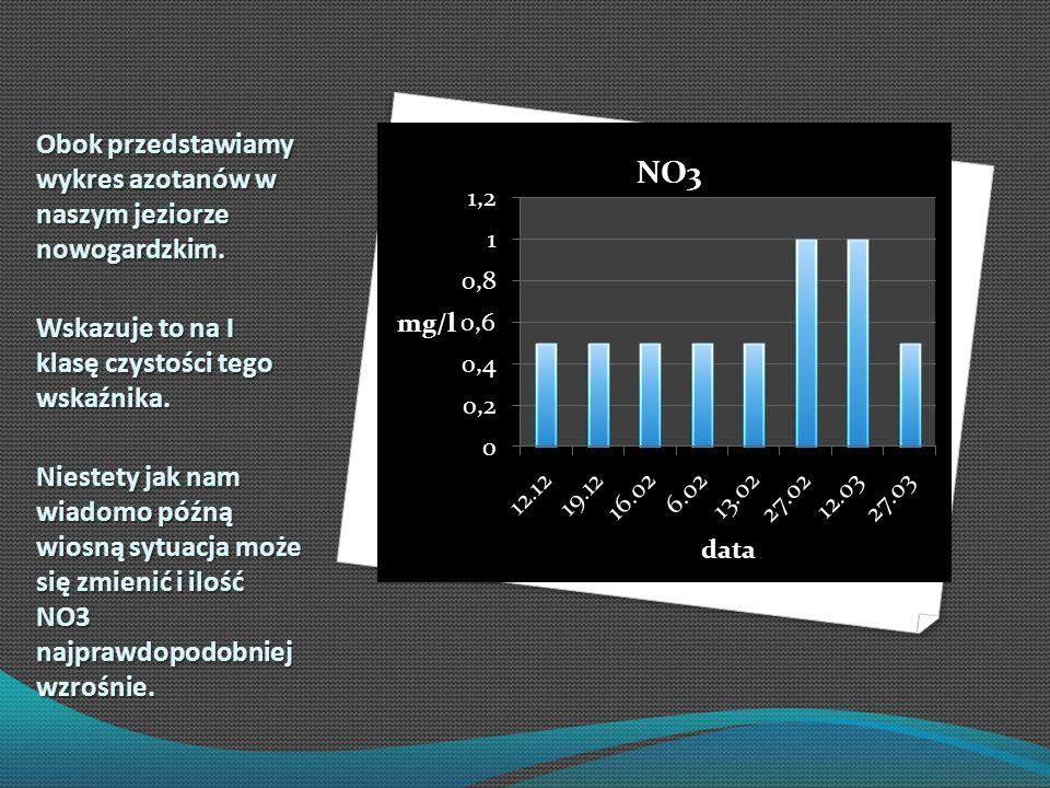 Obok przedstawiamy wykres azotanów w naszym jeziorze nowogardzkim. Wskazuje to na I klasę czystości tego wskaźnika. Niestety jak nam wiadomo późną wio