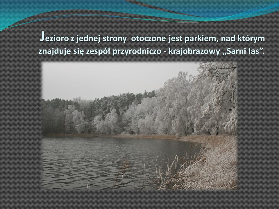 J ezioro z jednej strony otoczone jest parkiem, nad którym znajduje się zespół przyrodniczo - krajobrazowy Sarni las.