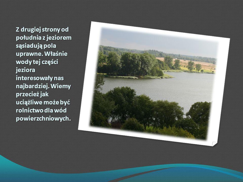 Z drugiej strony od południa z jeziorem sąsiadują pola uprawne. Właśnie wody tej części jeziora interesowały nas najbardziej. Wiemy przecież jak uciąż