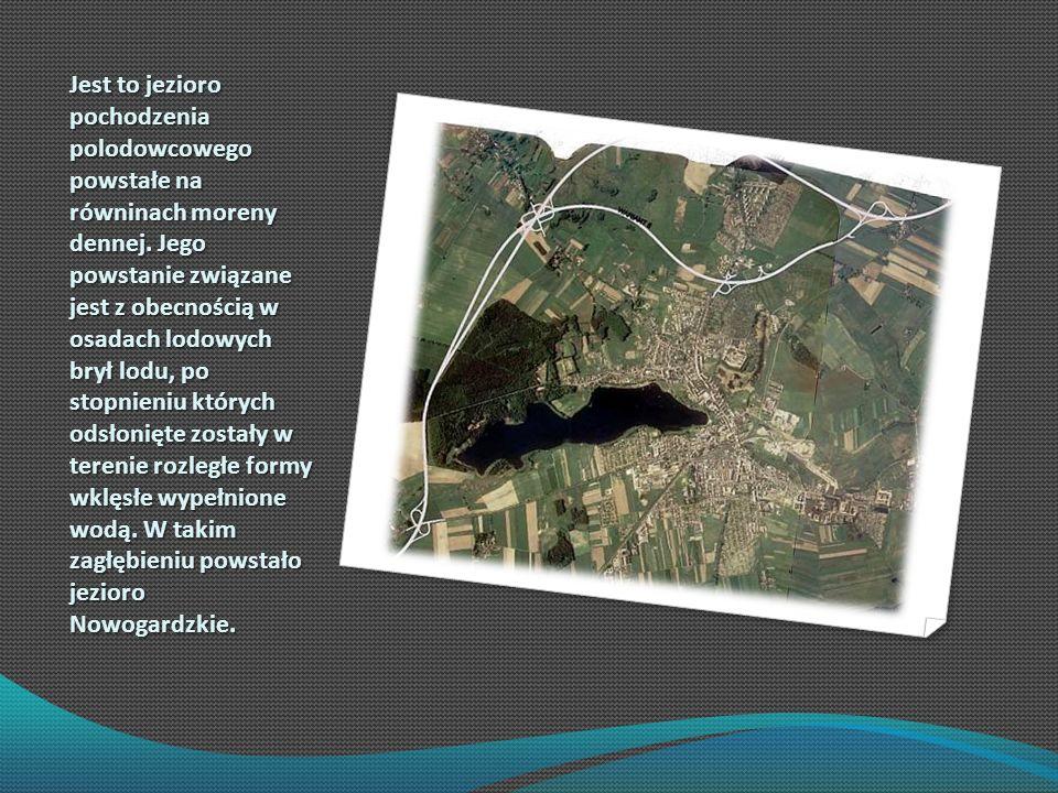 Jest to jezioro pochodzenia polodowcowego powstałe na równinach moreny dennej. Jego powstanie związane jest z obecnością w osadach lodowych brył lodu,