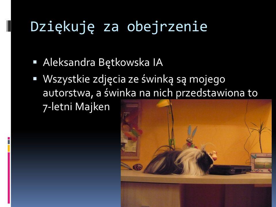 Dziękuję za obejrzenie Aleksandra Bętkowska IA Wszystkie zdjęcia ze świnką są mojego autorstwa, a świnka na nich przedstawiona to 7-letni Majken