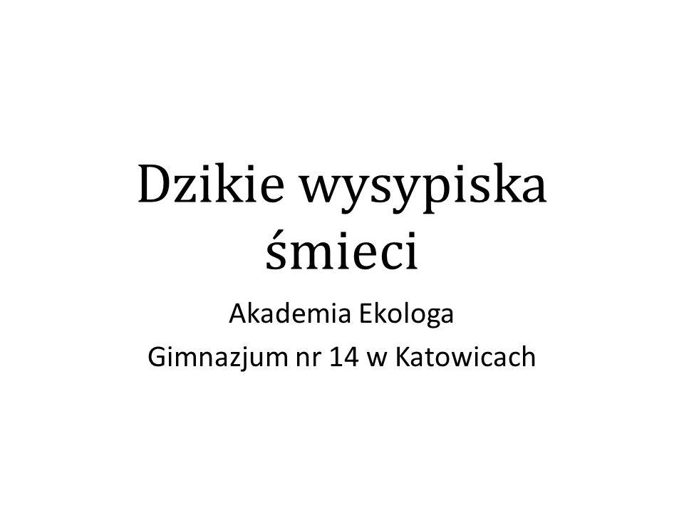 Dzikie wysypiska śmieci Akademia Ekologa Gimnazjum nr 14 w Katowicach