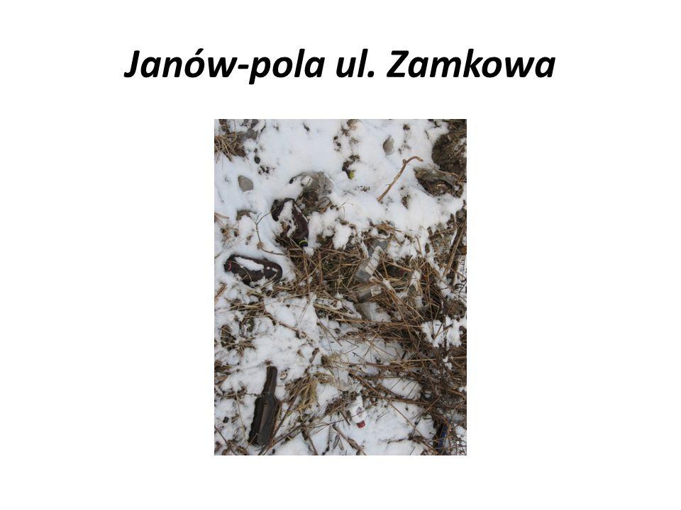 Janów-pola ul. Zamkowa