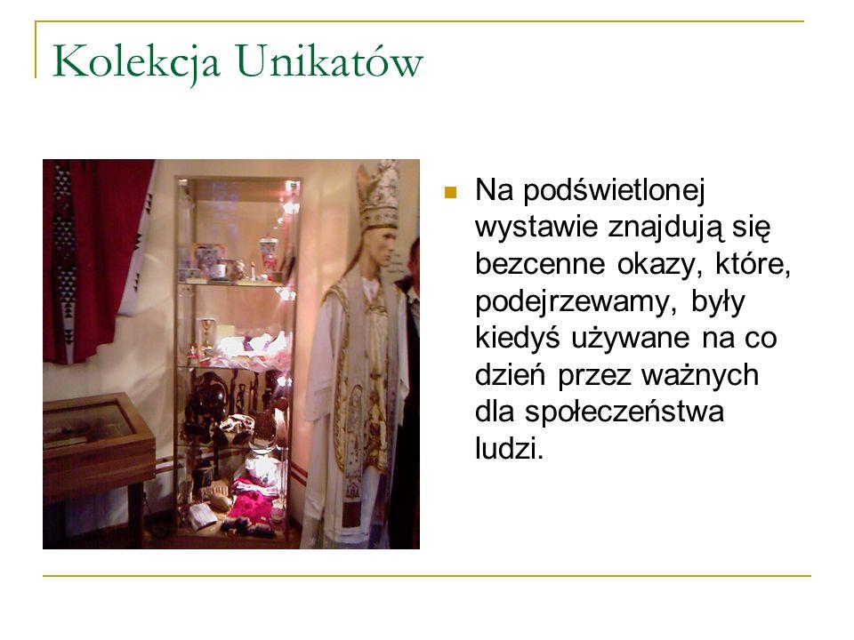 Kolekcja Unikatów Na podświetlonej wystawie znajdują się bezcenne okazy, które, podejrzewamy, były kiedyś używane na co dzień przez ważnych dla społeczeństwa ludzi.