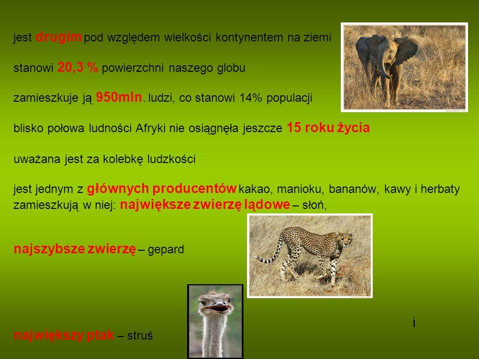 Zadanie 5. Jak nazywa się ludność Madagaskaru? a) Pigmeje b) Malgasze c) Arabowie