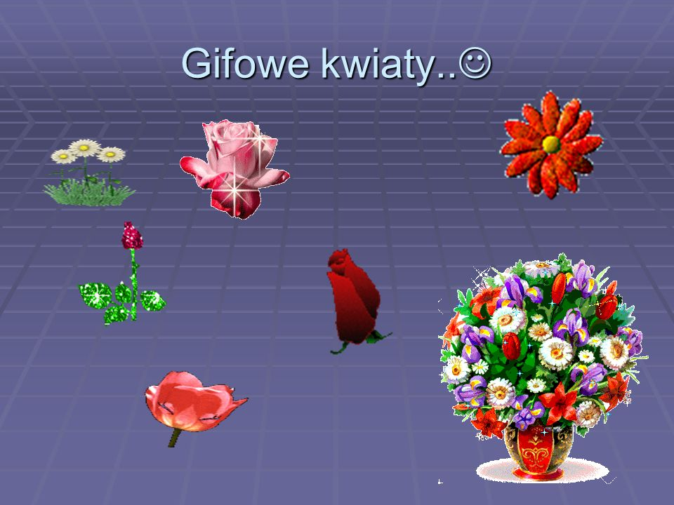 Gifowe kwiaty.. Gifowe kwiaty..