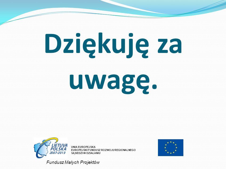 Dziękuję za uwagę. UNIA EUROPEJSKA EUROPEJSKI FUNDUSZ ROZWOJU REGIONALNEGO SĄSIEDZI W DZIAŁANIU Fundusz Małych Projektów
