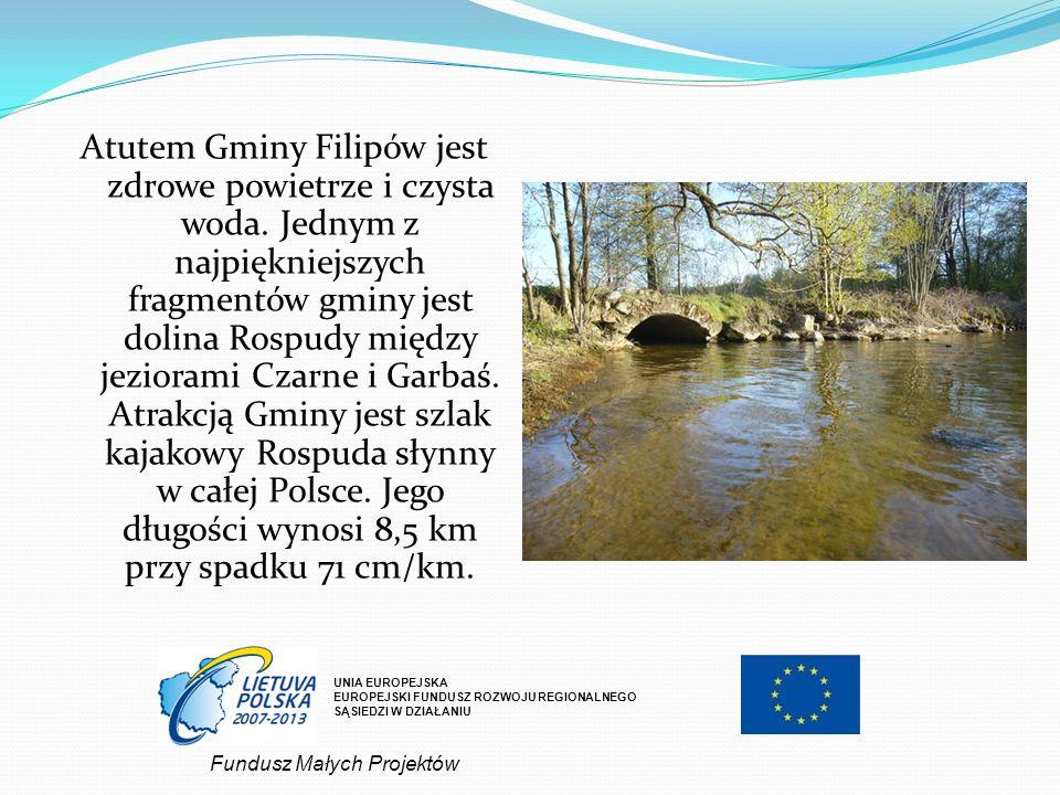 Atutem Gminy Filipów jest zdrowe powietrze i czysta woda. Jednym z najpiękniejszych fragmentów gminy jest dolina Rospudy między jeziorami Czarne i Gar