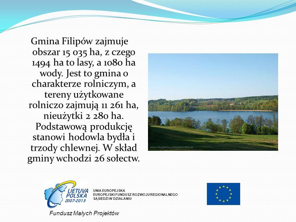Gmina Filipów zajmuje obszar 15 035 ha, z czego 1494 ha to lasy, a 1080 ha wody. Jest to gmina o charakterze rolniczym, a tereny użytkowane rolniczo z