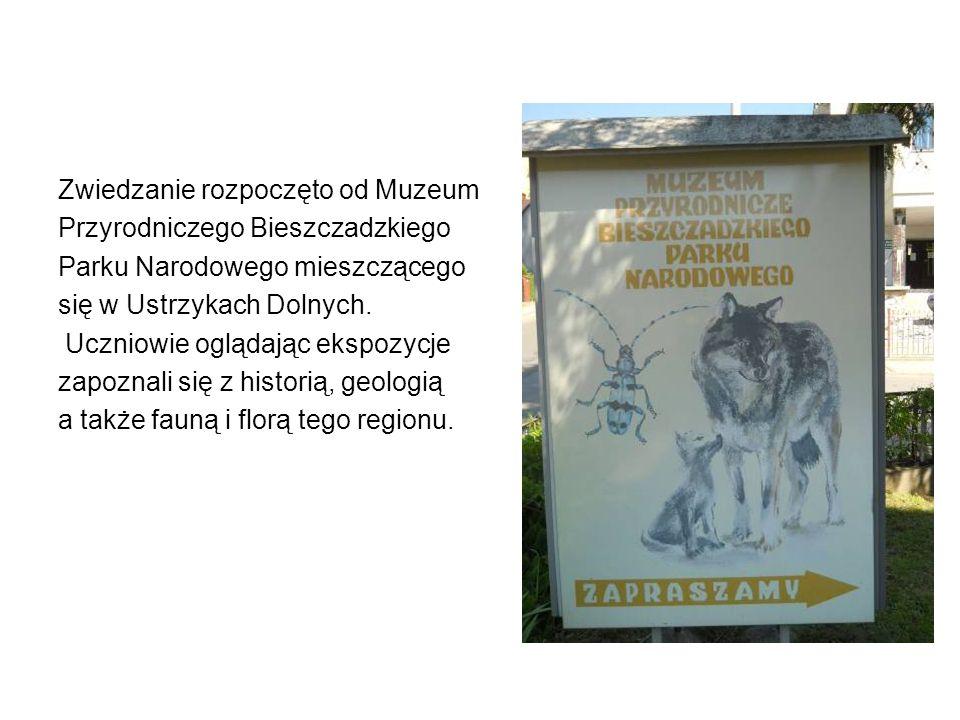 Zwiedzanie rozpoczęto od Muzeum Przyrodniczego Bieszczadzkiego Parku Narodowego mieszczącego się w Ustrzykach Dolnych. Uczniowie oglądając ekspozycje