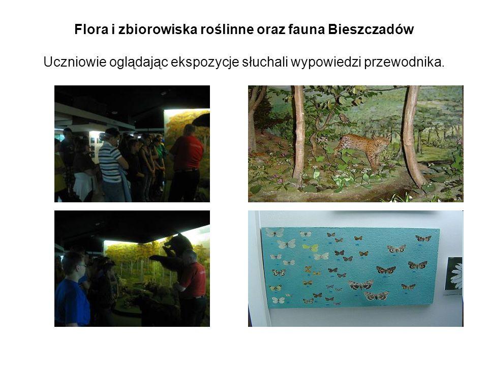 Flora i zbiorowiska roślinne oraz fauna Bieszczadów Uczniowie oglądając ekspozycje słuchali wypowiedzi przewodnika.
