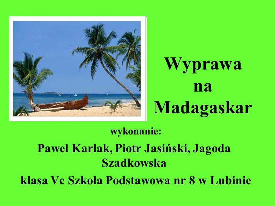 Wyprawa na Madagaskar wykonanie: Paweł Karlak, Piotr Jasiński, Jagoda Szadkowska klasa Vc Szkoła Podstawowa nr 8 w Lubinie