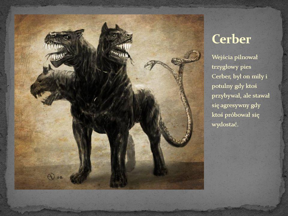 Wejścia pilnował trzygłowy pies Cerber, był on miły i potulny gdy ktoś przybywał, ale stawał się agresywny gdy ktoś próbował się wydostać.