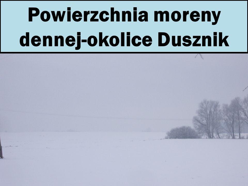 Powierzchnia moreny dennej-okolice Dusznik