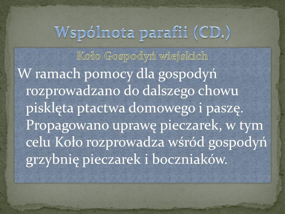 Patronem parafii jest święty Bartłomiej. Wyróżniał się w gronie apostolskim dobrym wykształceniem.