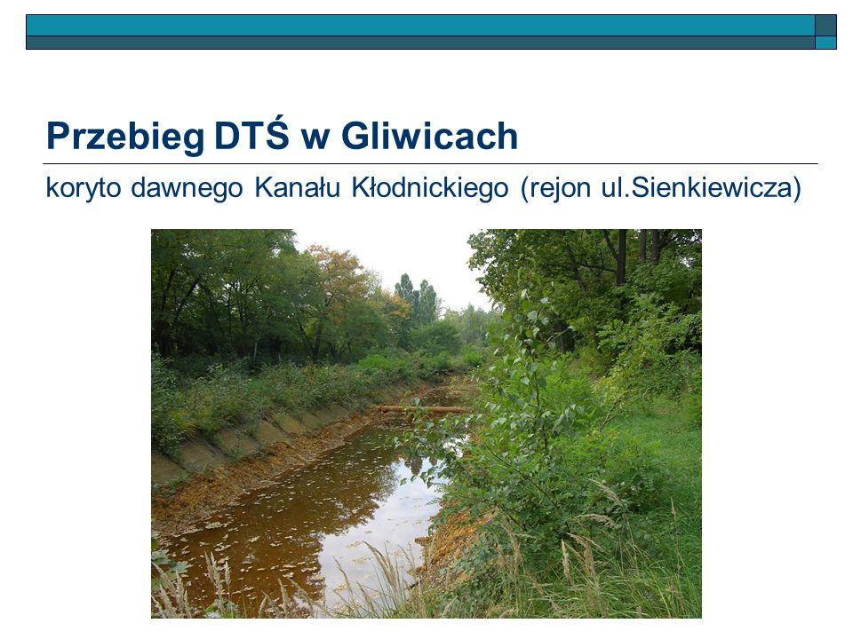 Przebieg DTŚ w Gliwicach koryto dawnego Kanału Kłodnickiego (rejon ul.Sienkiewicza)