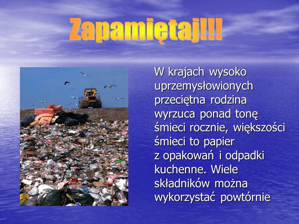 W krajach wysoko uprzemysłowionych przeciętna rodzina wyrzuca ponad tonę śmieci rocznie, większości śmieci to papier z opakowań i odpadki kuchenne.