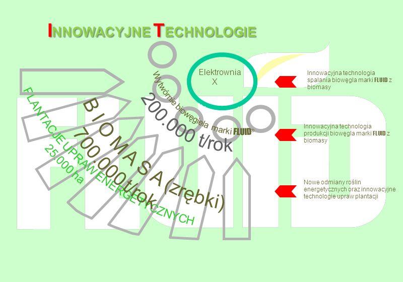 (Grupa EdF) Innowacyjna technologia spalania biowęgla marki FLUID z biomasy Innowacyjna technologia produkcji biowęgla marki FLUID z biomasy Nowe odmi