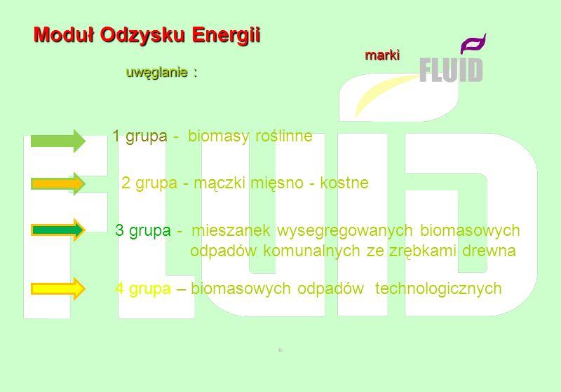Moduł Odzysku Energii Moduł Odzysku Energii marki marki uwęglanie : uwęglanie : FLUID 1 grupa - biomasy roślinne 2 grupa - mączki mięsno - kostne 3 gr