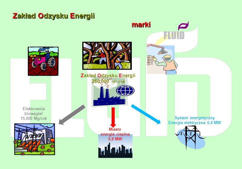 Zakład Odzysku Energii marki FLUID Zakład Odzysku Energii 250.000 m 3 /rok Elektrownia biowęgiel 15.000 Mg/rok Miasto energia cieplna 0,8 MW System en