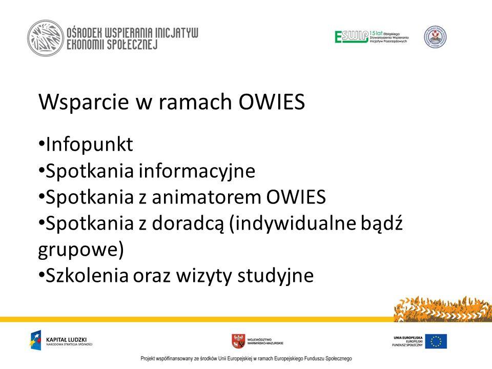 Wsparcie w ramach OWIES Infopunkt Spotkania informacyjne Spotkania z animatorem OWIES Spotkania z doradcą (indywidualne bądź grupowe) Szkolenia oraz w