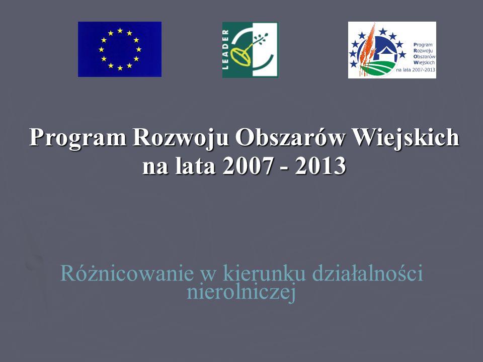 Program Rozwoju Obszarów Wiejskich na lata 2007 - 2013 Różnicowanie w kierunku działalności nierolniczej