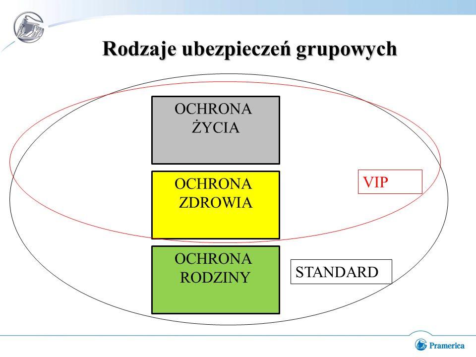 Rodzaje ubezpieczeń grupowych OCHRONA ŻYCIA OCHRONA ZDROWIA OCHRONA RODZINY VIP STANDARD