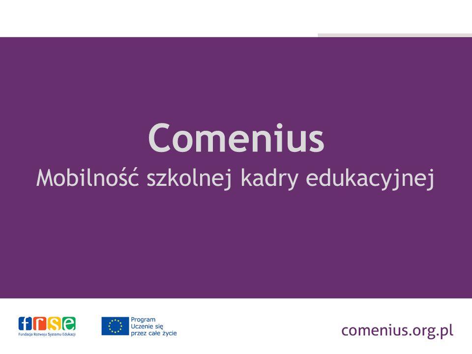 Program Uczenie się przez całe życie Czas trwania: 2007 – 2013 Programy sektorowe: Comenius Erasmus Leonardo da Vinci Grundtvig PROGRAM COMENIUS