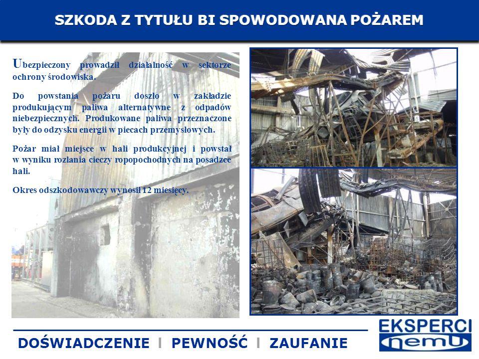 U bezpieczony prowadził działalność w sektorze ochrony środowiska. Do powstania pożaru doszło w zakładzie produkującym paliwa alternatywne z odpadów n