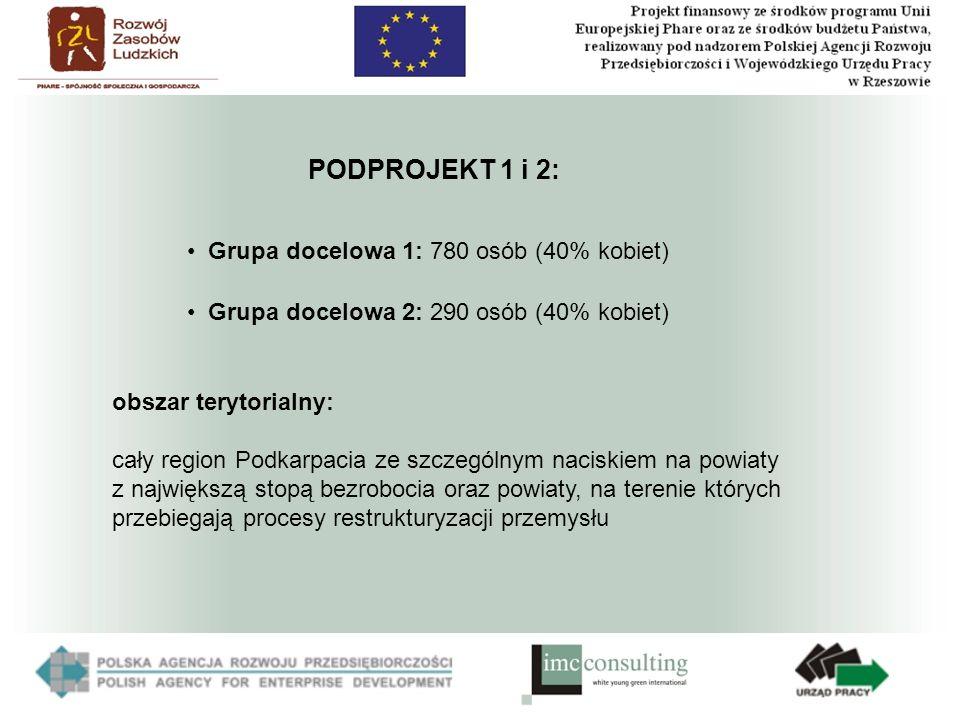 PODPROJEKT 1 i 2: obszar terytorialny: cały region Podkarpacia ze szczególnym naciskiem na powiaty z największą stopą bezrobocia oraz powiaty, na terenie których przebiegają procesy restrukturyzacji przemysłu Grupa docelowa 1: 780 osób (40% kobiet) Grupa docelowa 2: 290 osób (40% kobiet)