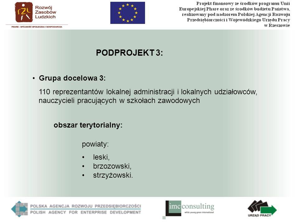PODPROJEKT 3: powiaty: leski, brzozowski, strzyżowski.