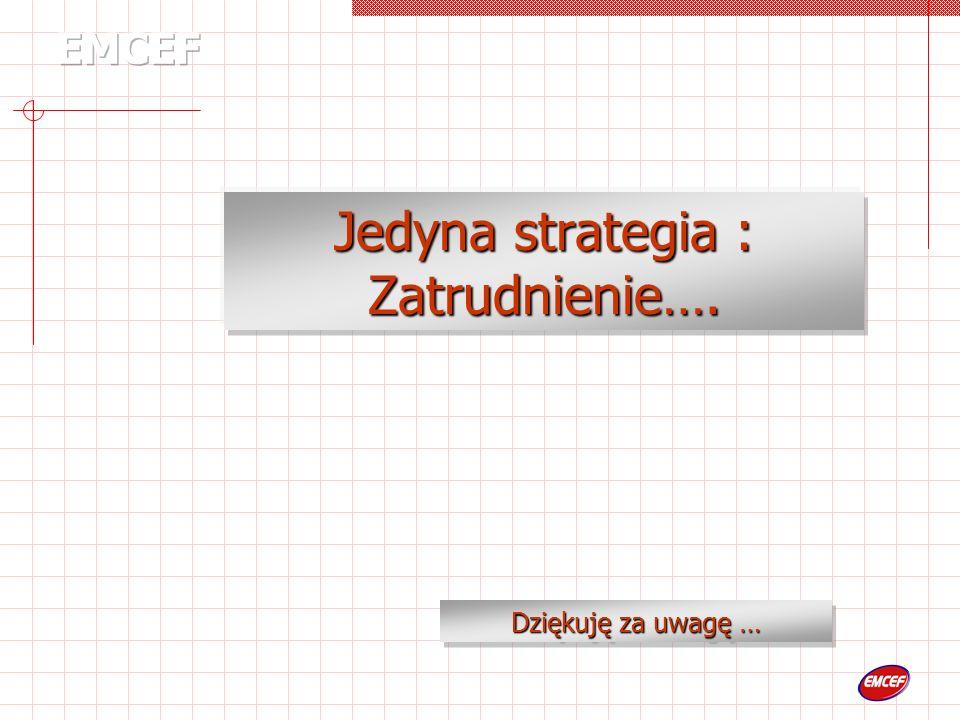 Jedyna strategia : Zatrudnienie…. Dziękuję za uwagę …