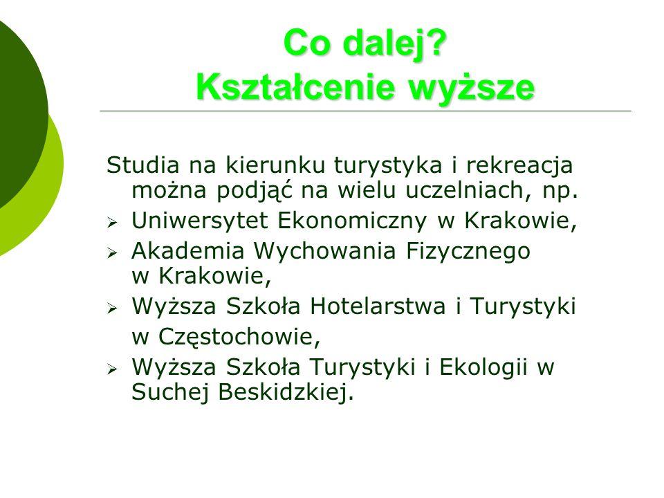 Co dalej? Kształcenie wyższe Studia na kierunku turystyka i rekreacja można podjąć na wielu uczelniach, np. Uniwersytet Ekonomiczny w Krakowie, Akadem