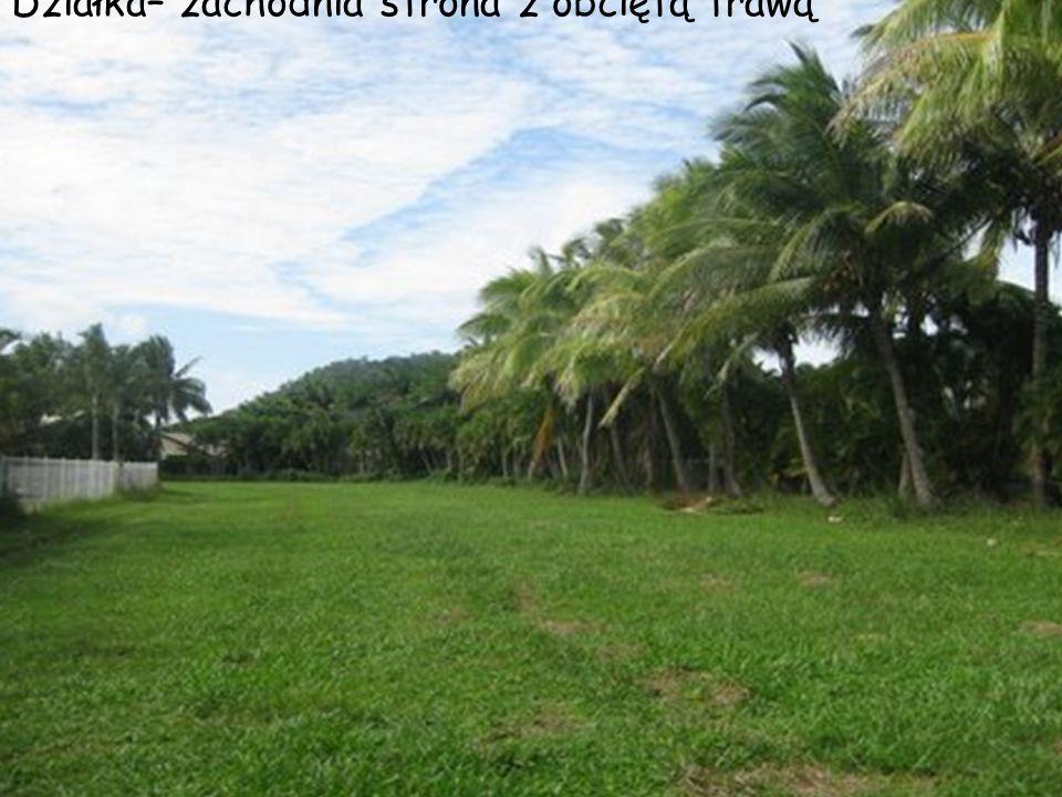 Działka– zachodnia strona z obciętą trawą