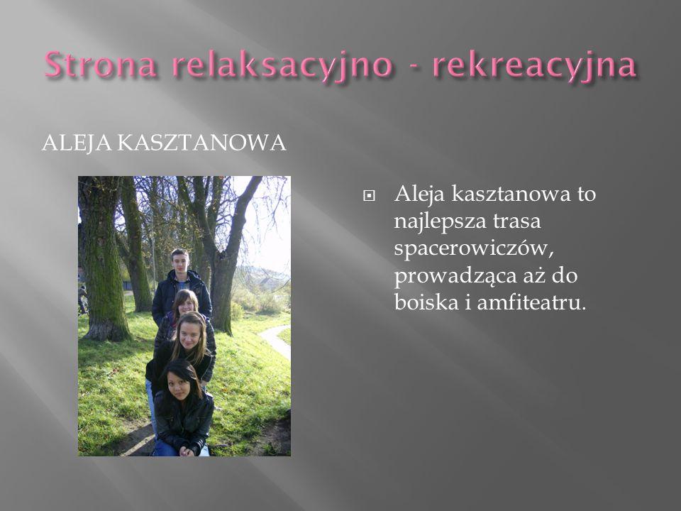 ALEJA KASZTANOWA Aleja kasztanowa to najlepsza trasa spacerowiczów, prowadząca aż do boiska i amfiteatru.