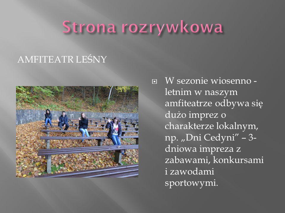 AMFITEATR LEŚNY W sezonie wiosenno - letnim w naszym amfiteatrze odbywa się dużo imprez o charakterze lokalnym, np. Dni Cedyni – 3- dniowa impreza z z