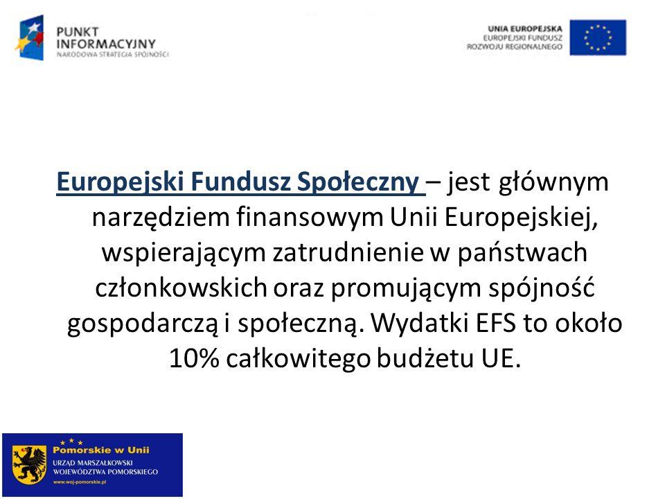 Europejski Fundusz Społeczny – jest głównym narzędziem finansowym Unii Europejskiej, wspierającym zatrudnienie w państwach członkowskich oraz promując