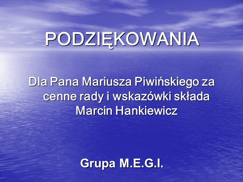 PODZIĘKOWANIA Dla Pana Mariusza Piwińskiego za cenne rady i wskazówki składa Marcin Hankiewicz Grupa M.E.G.I.