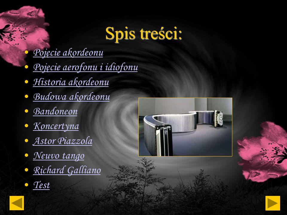 AKORDEON Autor: Maciej Krupa kl. VA OSM II st. Muzyka: Oblivion -kompozytor: Astor Piazzola -wykonawca: Richard Galliano (z zespołem)