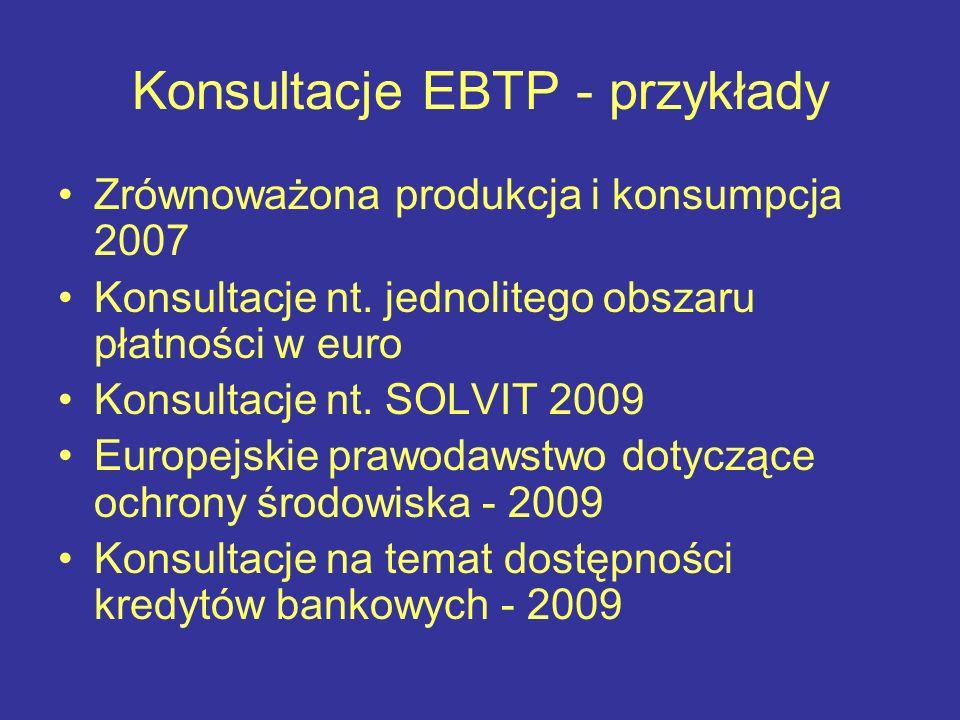 Konsultacje EBTP - przykłady Zrównoważona produkcja i konsumpcja 2007 Konsultacje nt. jednolitego obszaru płatności w euro Konsultacje nt. SOLVIT 2009
