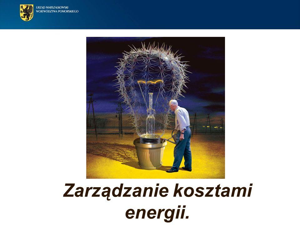 Zarządzanie kosztami energii.