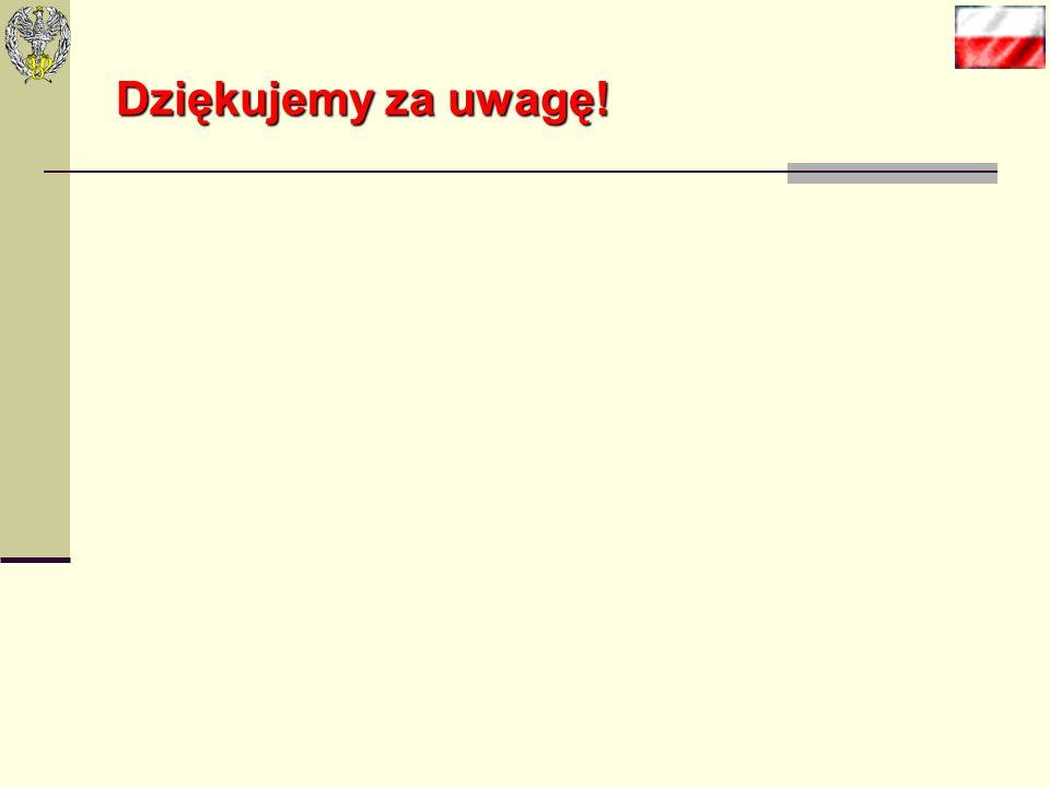Bibliografia: 1.Badanie polskich sklepów internetowych, Internet Standard, wrzesień 2010r. 2. www.allegro.plwww.allegro.pl 3. www.mf.gov.plwww.mf.gov.