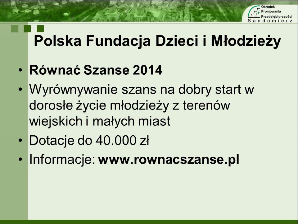 Polska Fundacja Dzieci i Młodzieży Równać Szanse 2014 Wyrównywanie szans na dobry start w dorosłe życie młodzieży z terenów wiejskich i małych miast D