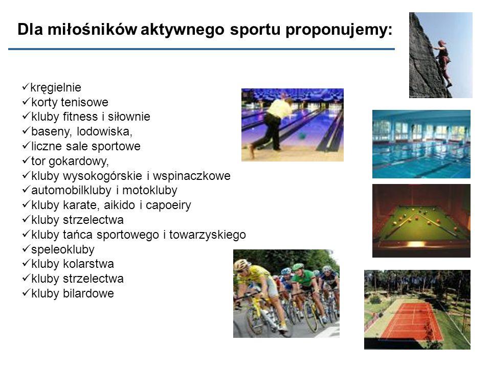 kręgielnie korty tenisowe kluby fitness i siłownie baseny, lodowiska, liczne sale sportowe tor gokardowy, kluby wysokogórskie i wspinaczkowe automobil
