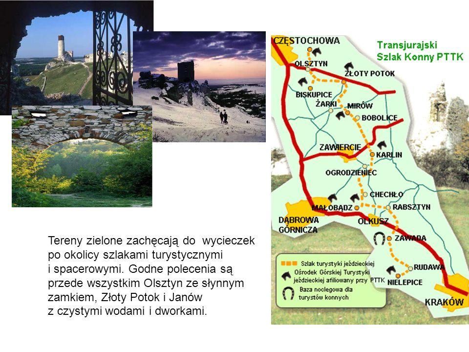 Tereny zielone zachęcają do wycieczek po okolicy szlakami turystycznymi i spacerowymi. Godne polecenia są przede wszystkim Olsztyn ze słynnym zamkiem,