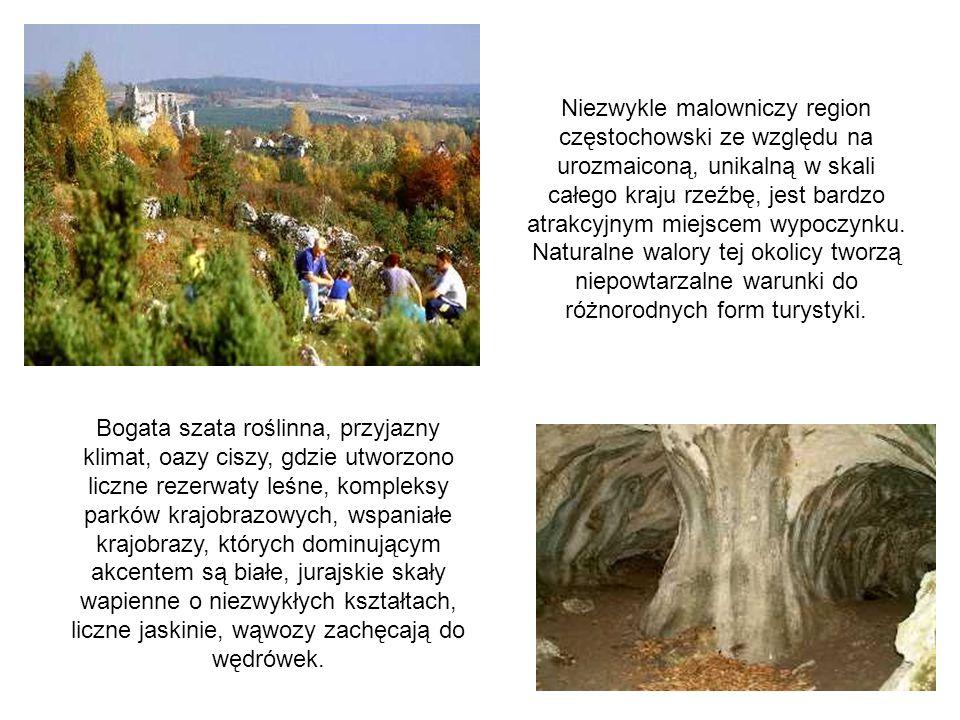 Niezwykle malowniczy region częstochowski ze względu na urozmaiconą, unikalną w skali całego kraju rzeźbę, jest bardzo atrakcyjnym miejscem wypoczynku